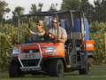 Where to rent Utility vehicle 4 Seat Kubota, RTV1140 in Grand Forks ND